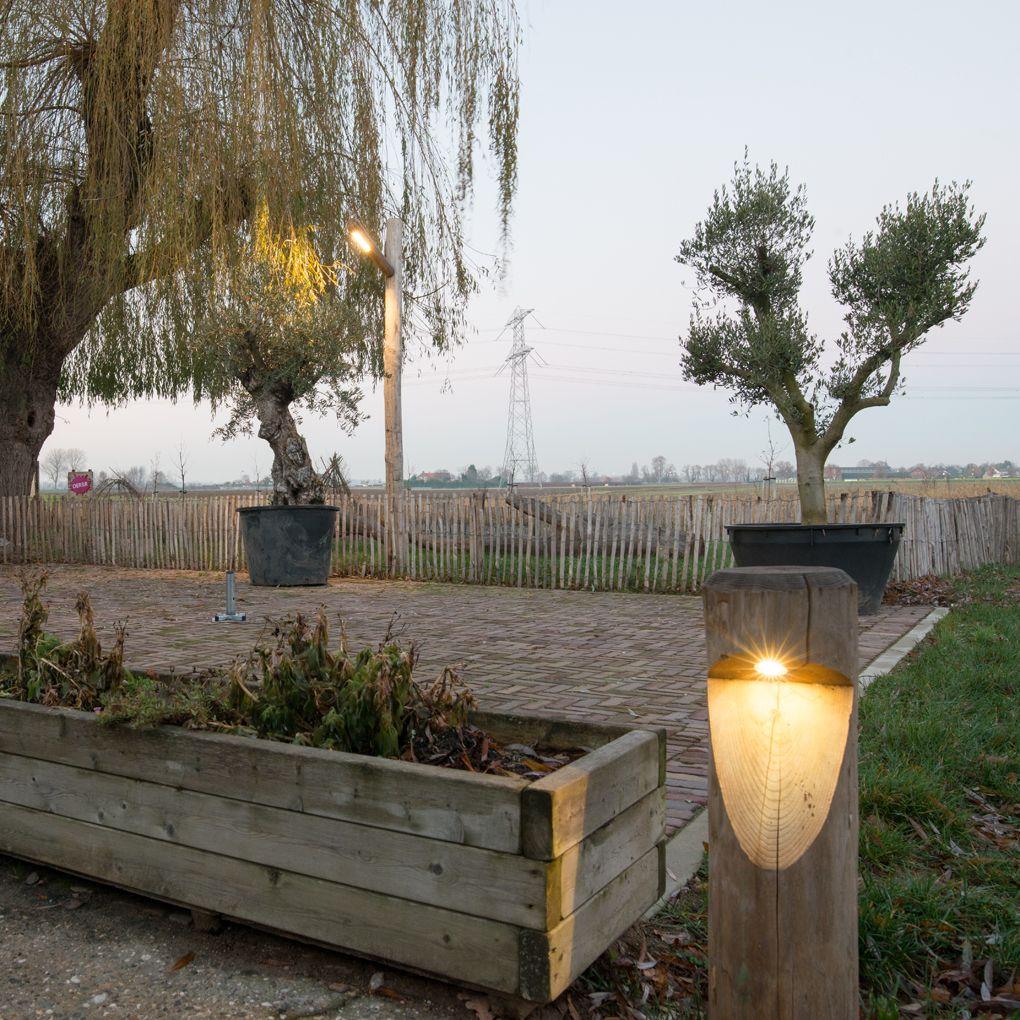 natuurlijke buitenverlichting ideaal als fiets of voetpadverlichting